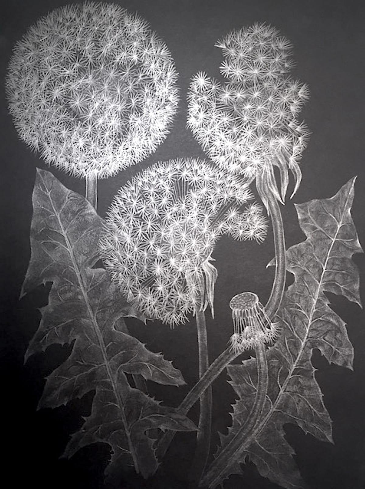 Shouting Flower: Margot Glass