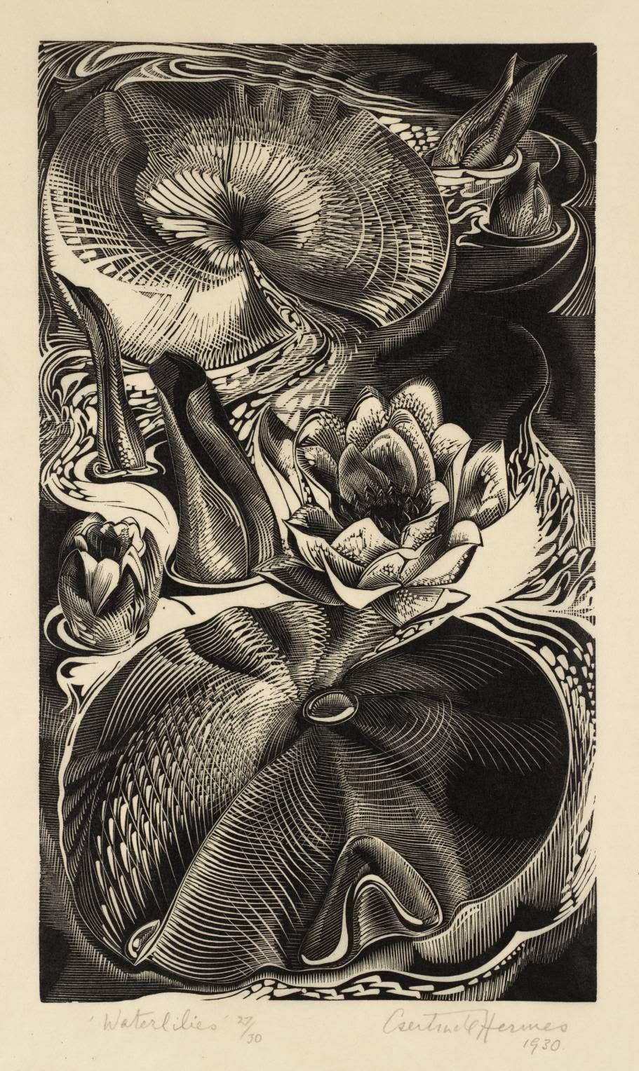Gertrude Hermes, Waterlilies, 1930 Wood Engraving