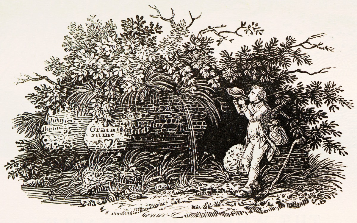 Thomas Bewick, A History of British Birds, Tailpiece, 1797 Wood Engraving