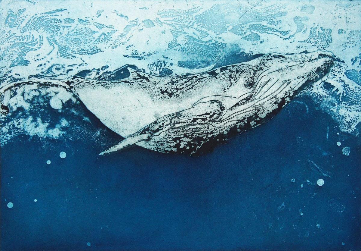 Animal Magic, Prints inspired by the Animal Kingdom