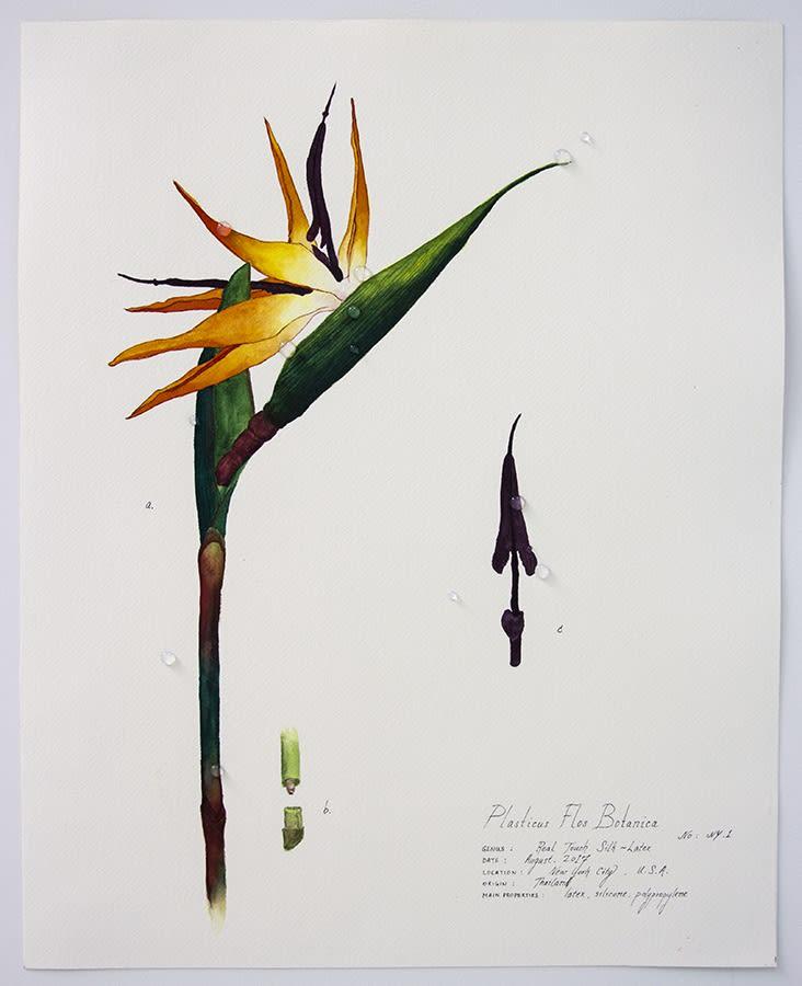 Magdalen Wong, Plasticus Flos Botanica. New York I . 2017 .