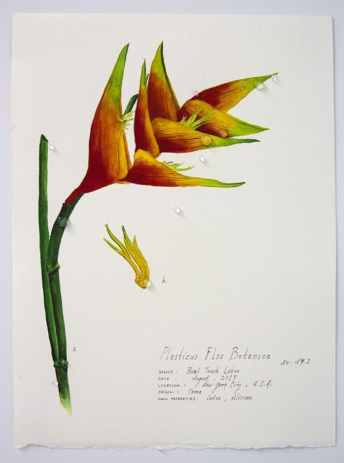 Magdalen Wong, Plasticus Flos Botanica New York II . 2017 .
