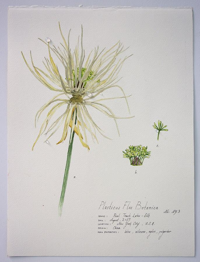 Magdalen Wong, Plasticus Flos Botanica New York III . 2017 .