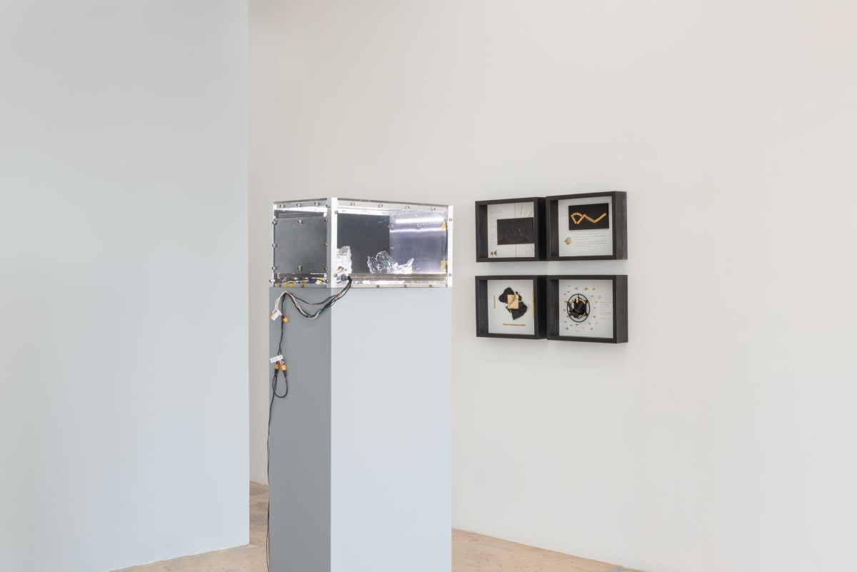 Installation View, Liu Xin: Living Distance, 2019