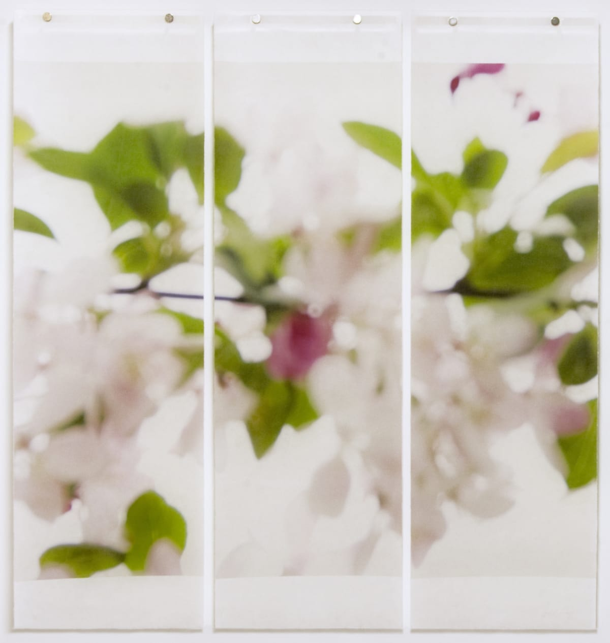 "Jeri Eisenberg's ""Till it's Time to Go"" archival pigment on kozo paper infused with encaustic medium. The work has shades of green, purple and white. The painting resembles a blurred image of petals and leaves."