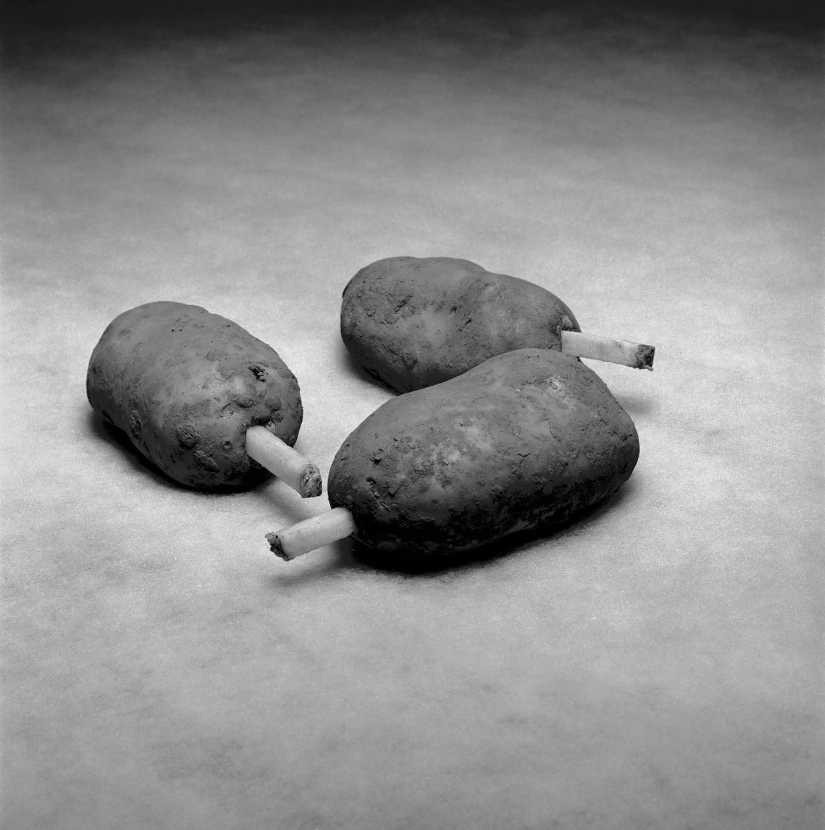 Brian Griffin, Three Test potatoes, McCain, Bèthune, France, 2017