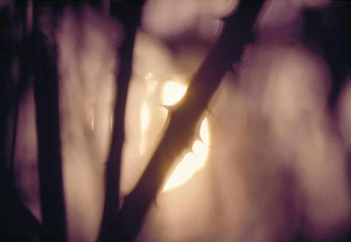 JOHN BLAKEMORE Sun series