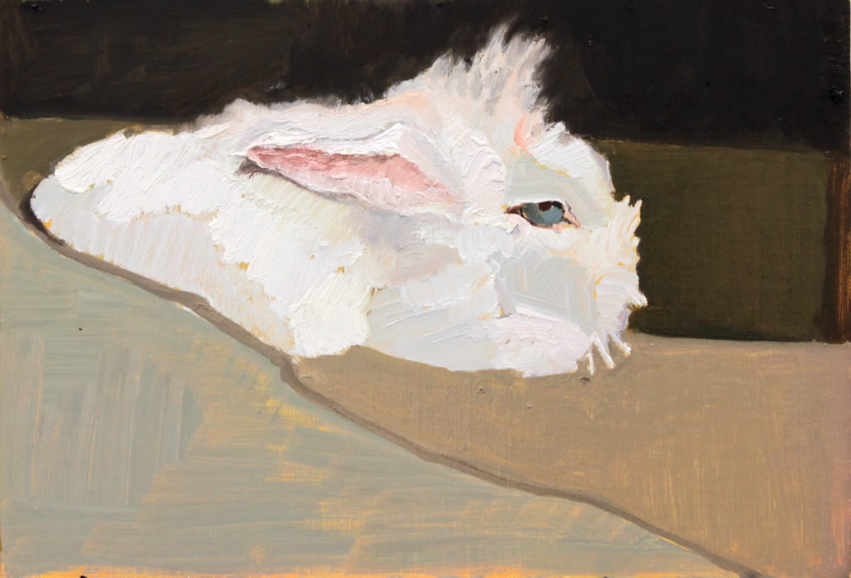 Mollie Douthit All ears Oil on linen panel 20 x 30 cm
