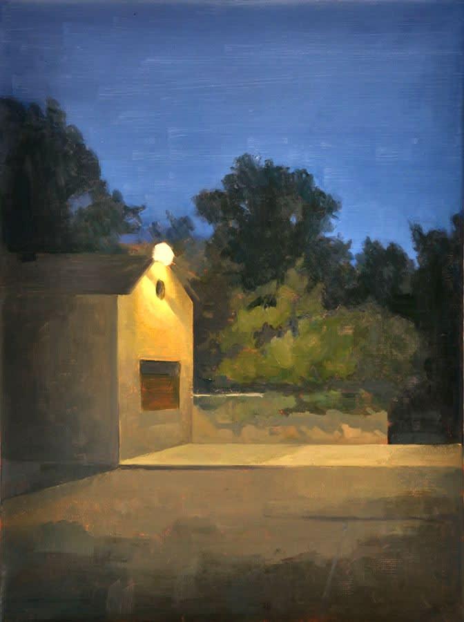 Maeve McCarthy Nightshed Oil on canvas 60 x 45 cm