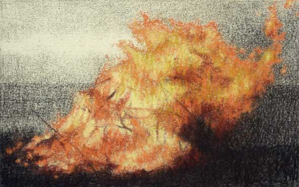 Gareth Reid Bonfire Charcoal & pastel on canvas 22 x 30 cm