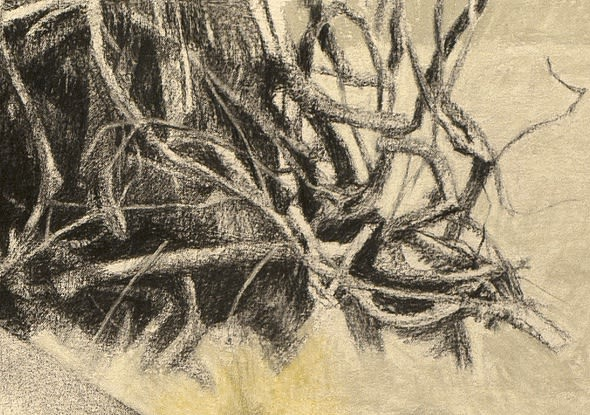 Gareth Reid Woodpile Charcoal & pastel on canvas 22 x 30cm
