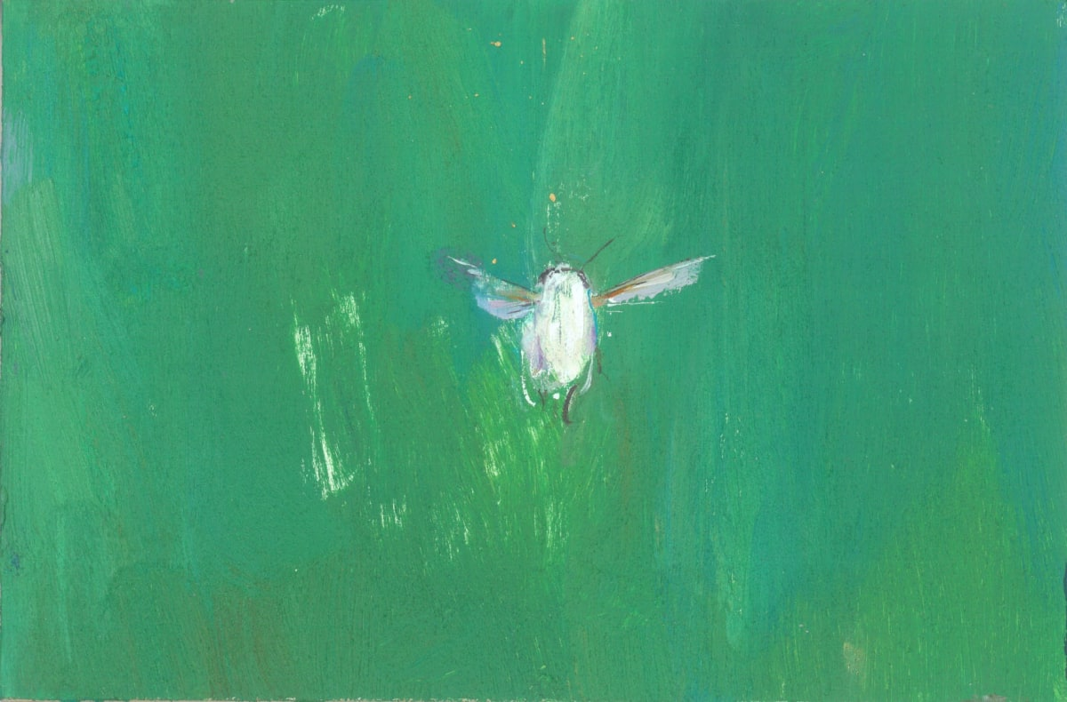 Gabhann Dunne Ghost of a bee Oil on gesso panel 10 x 15 cm