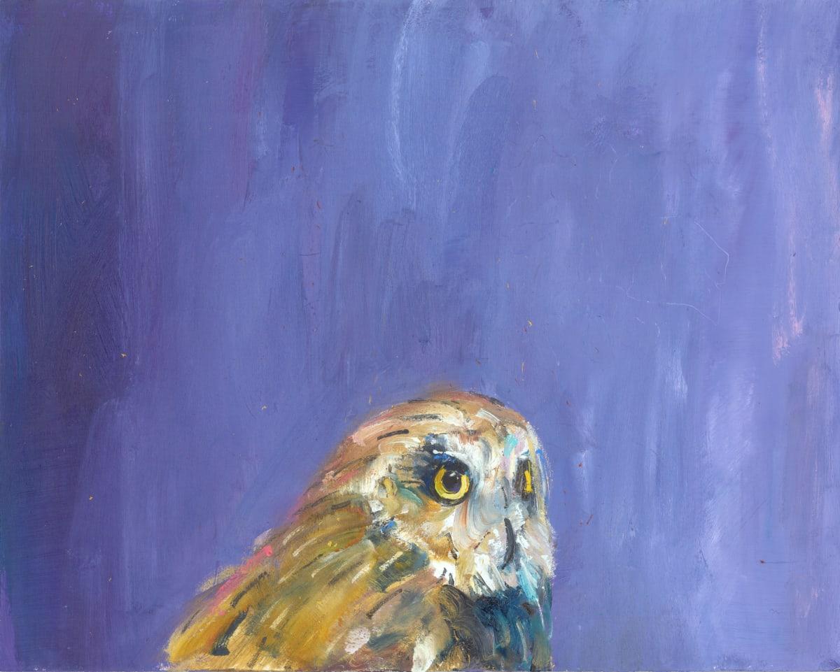 Gabhann Dunne Pliny's owl Oil on gesso panel 24 x 30 cm