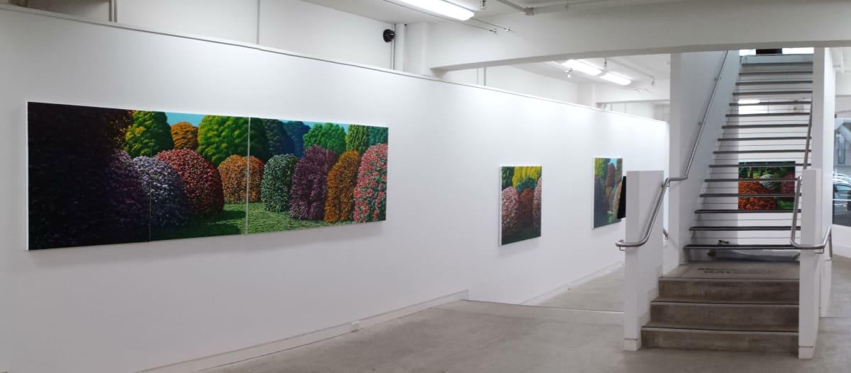Maughan Karl 2014 Installation 16