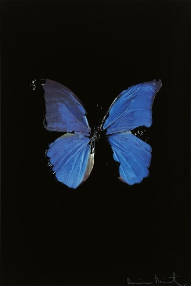 """DAMIEN HIRST The Soul on Jacob's Ladder New Religion Silkscreen prints on Somerset satin 410gsm Edition of 155: 100 x 66.7 cm Edition of 55: 150 x 99 cm Signed and numbered 2005 , Arial, sans-serif; line-height: normal;"""">"""
