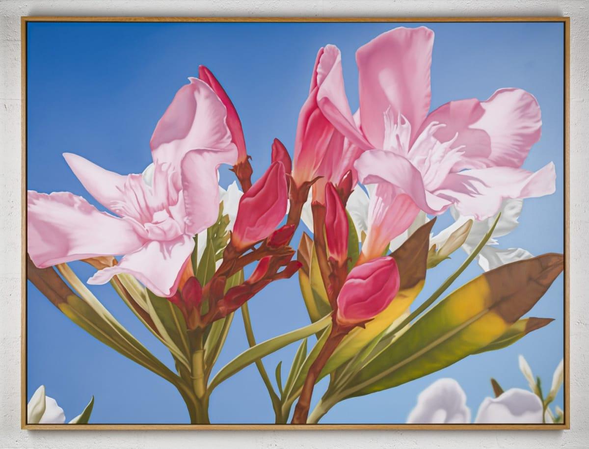Mustafa Hulusi Mustafa Hulusi Cyprus Realism (Oleander 3) 2019 Oil on canvas 153 x 204 cm