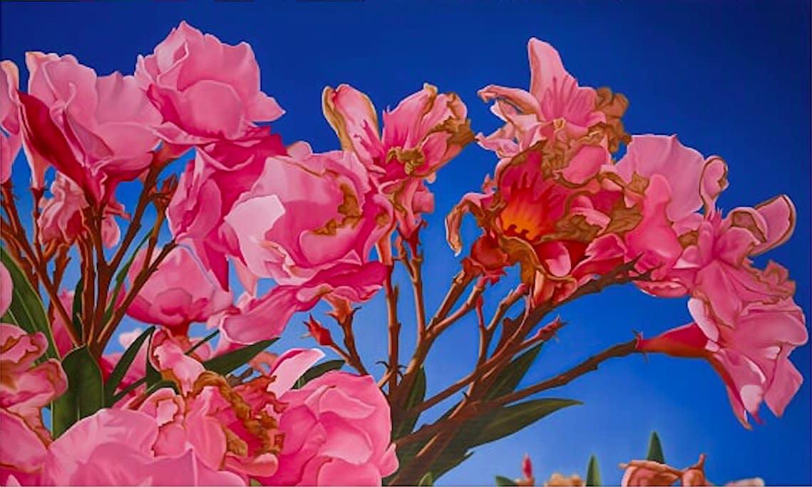 Mustafa Hulusi Oleander 1 2016 Oil on canvas 110 x 180 cm