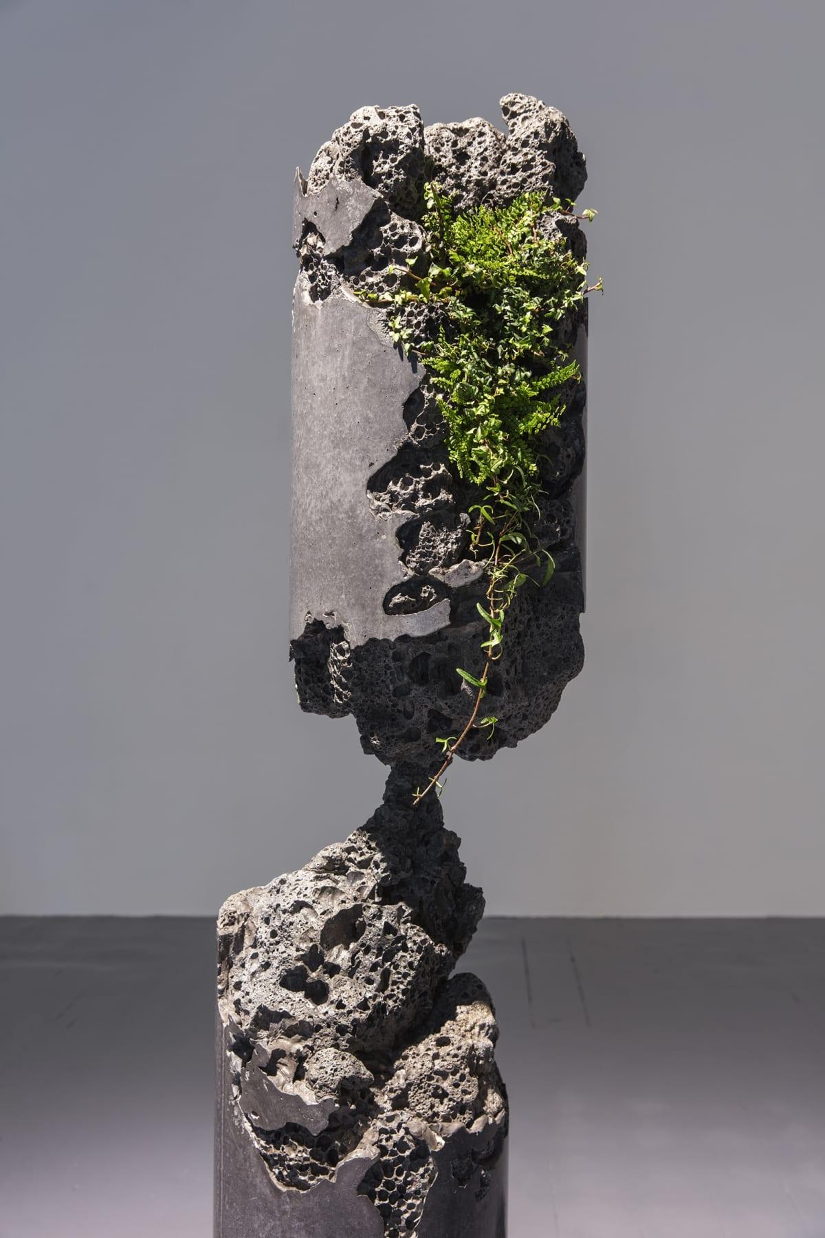Jamie North Forward Projection (detail), 2019 Concrete, blast furnace slag, steel, epoxy and plants 300 (diameter) x 160 cm