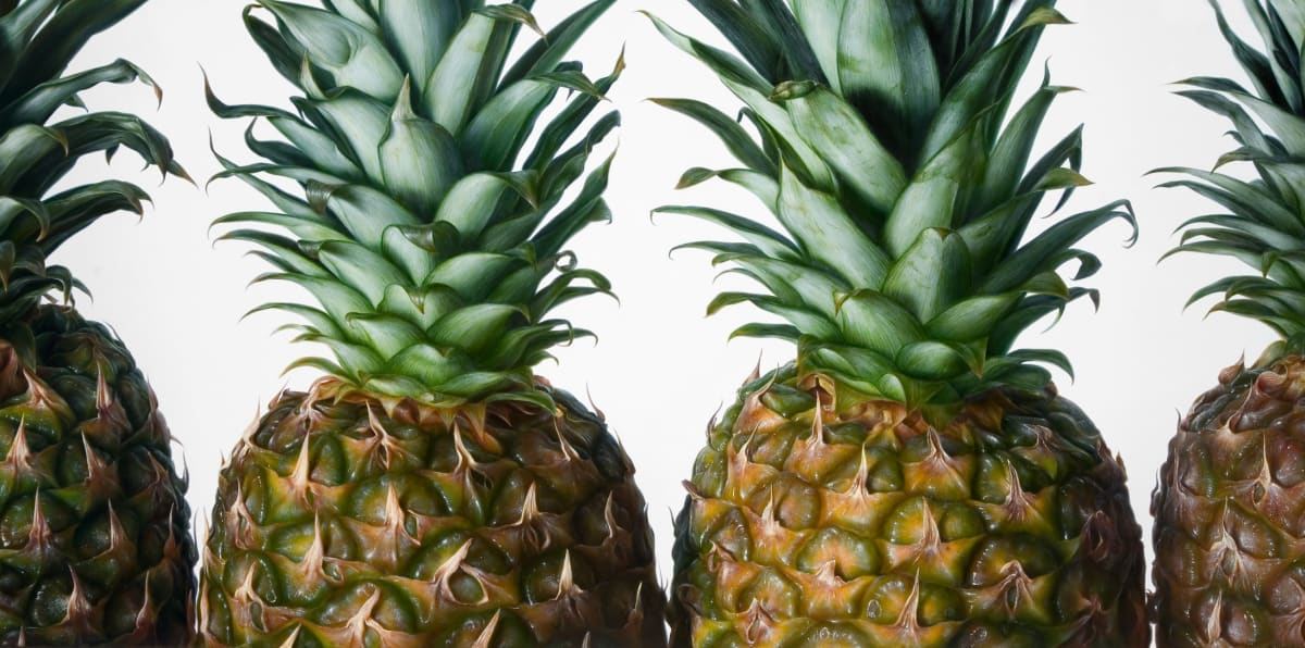Antonio Castello Pineapples Oil on linen 97 x 195 cm