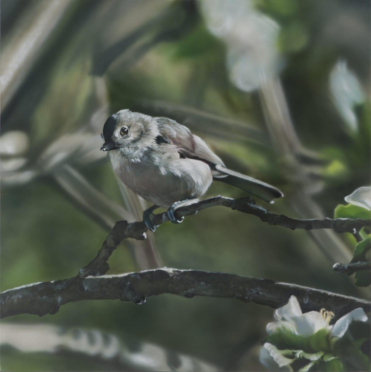 Bird in the Apple Tree Acrylic on polyester 84.5 x 84.2 cm