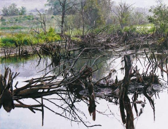James Van Patten Charlotte Vally Swamp