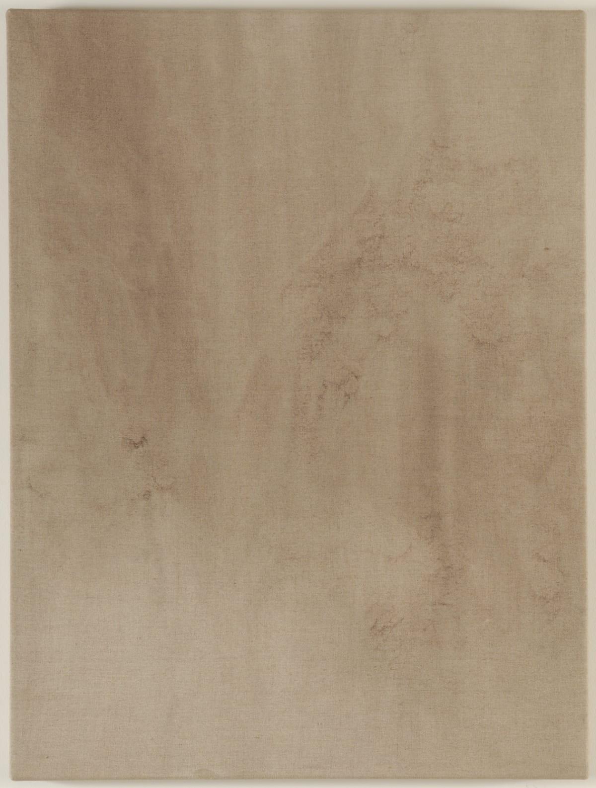 Michael Biberstein Small Atractor, 2010 Acrilíco s/ linho 81 x 61 x 5 cm