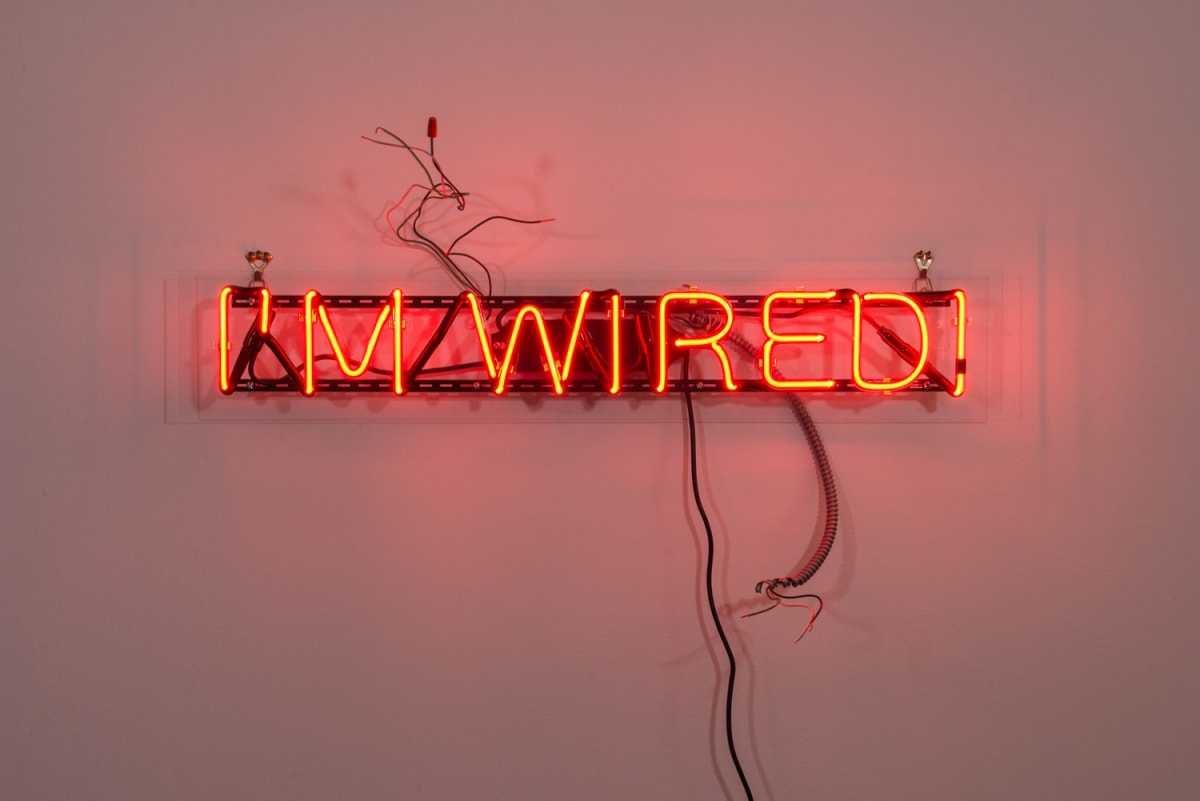 Artwork Image: Alejandro Diaz I'M WIRED, 2013 red neon 7 x 40 x 0 (2749)