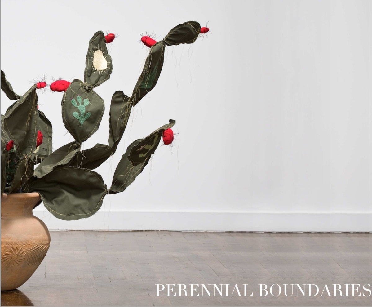 Perennial Boundaries: Fernando Andrade, Margarita Cabrera, Cesar Martinez, and Michael Menchaca