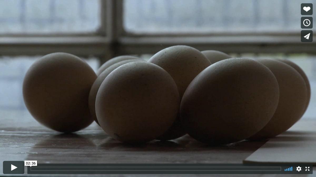 FRAME FOUNDRY / COMHGHALL CASEY FILM