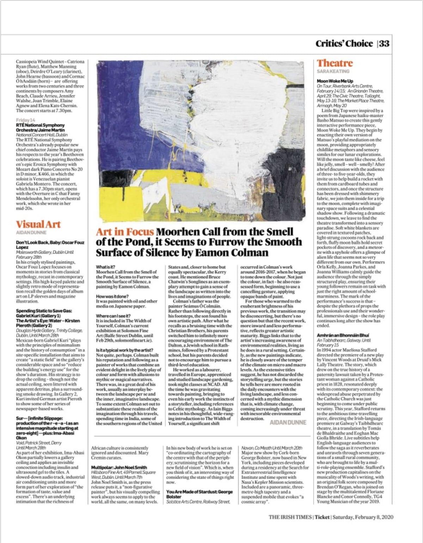 IRISH TIMES: Art in Focus