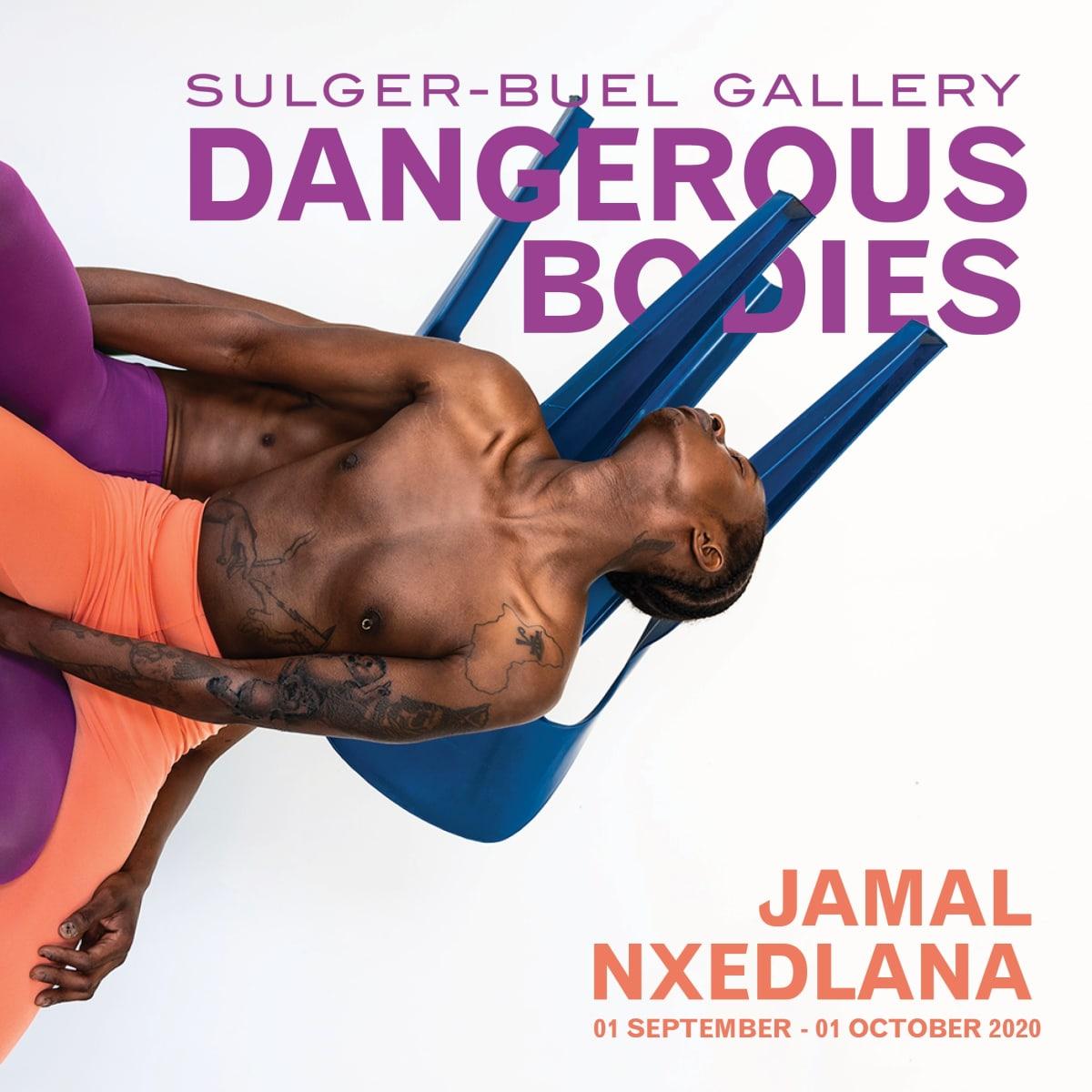 Dangerous Bodies (VIRTUAL EXHIBITION)