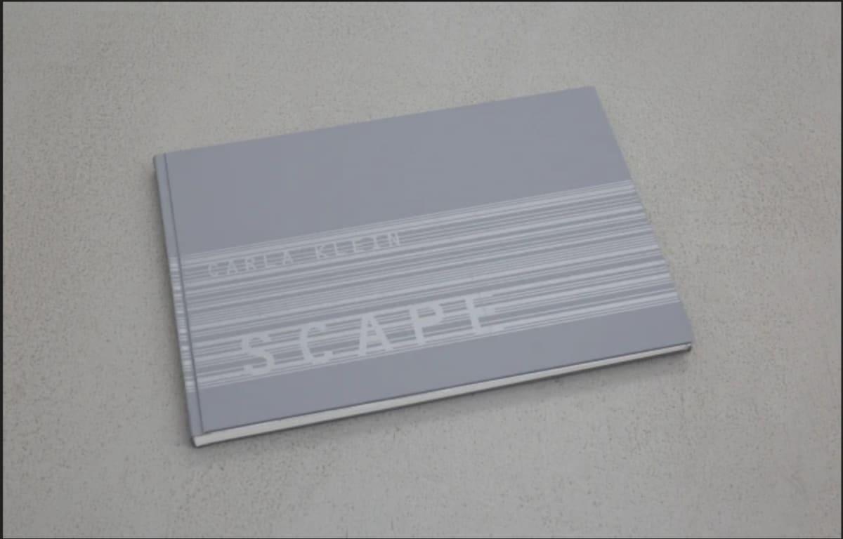 book cover of Carla Klein: Scape