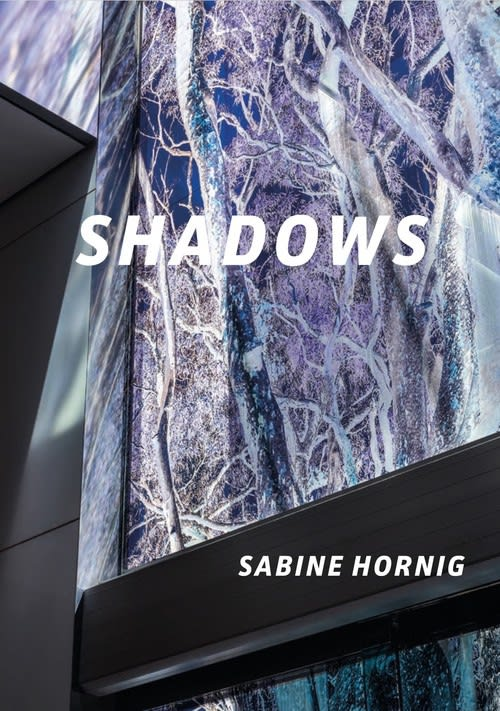 Book cover of Shadows by Sabine Hornig