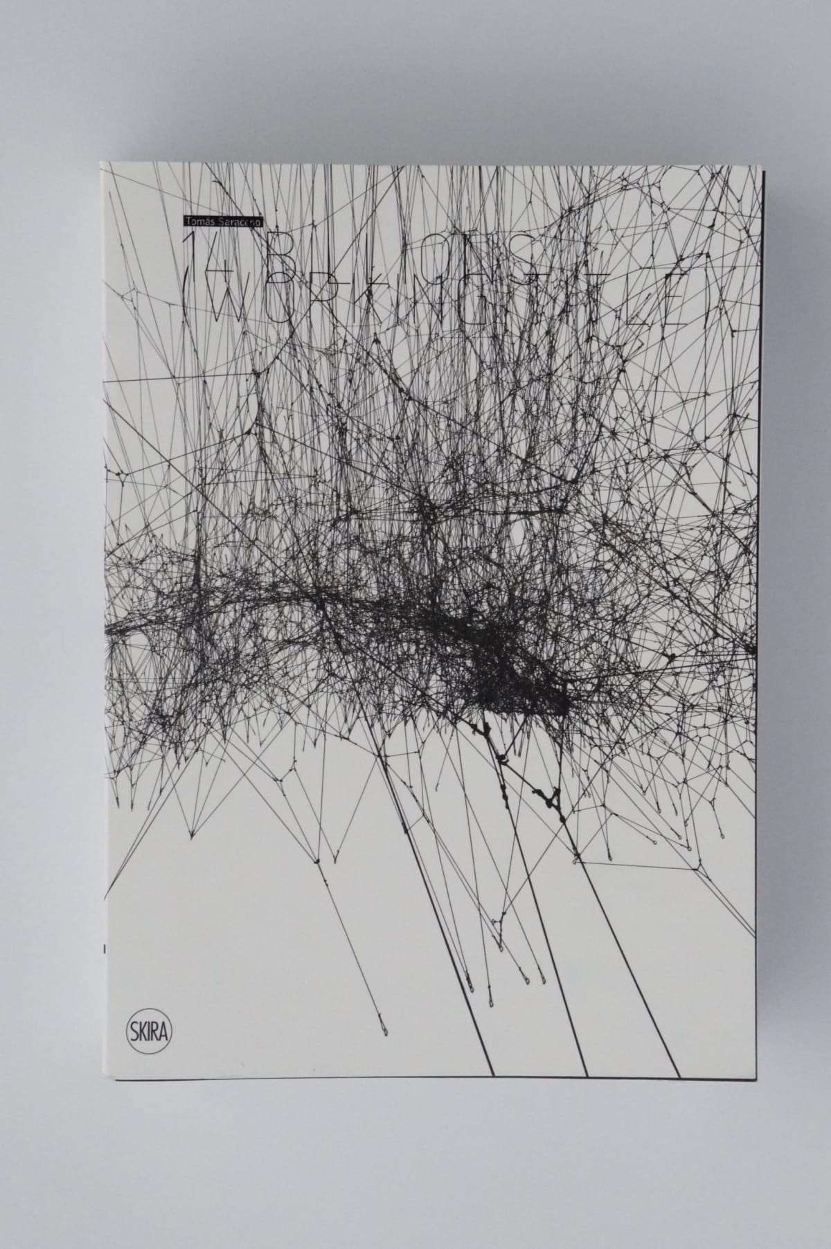 book cover of Tomas Saraceno: 14 Billions (Working TItle)