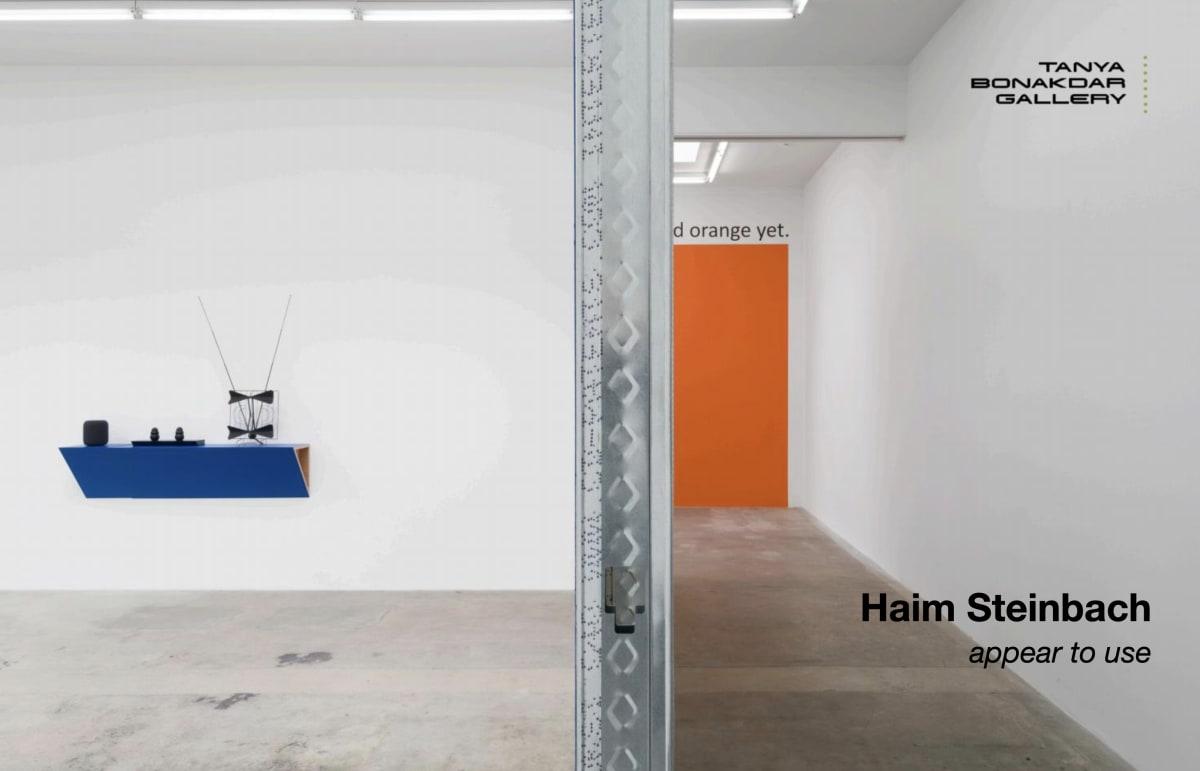 Haim Steinbach's cover image