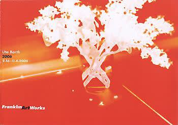 Exhibition catalogue cover for Uta Barth 2006 exhibition. White silhouette of flowers in a glass against a red and orange abstract background. Text: Uta Barth, 2006, 9.16-11.4.2006, Franklin Art Works