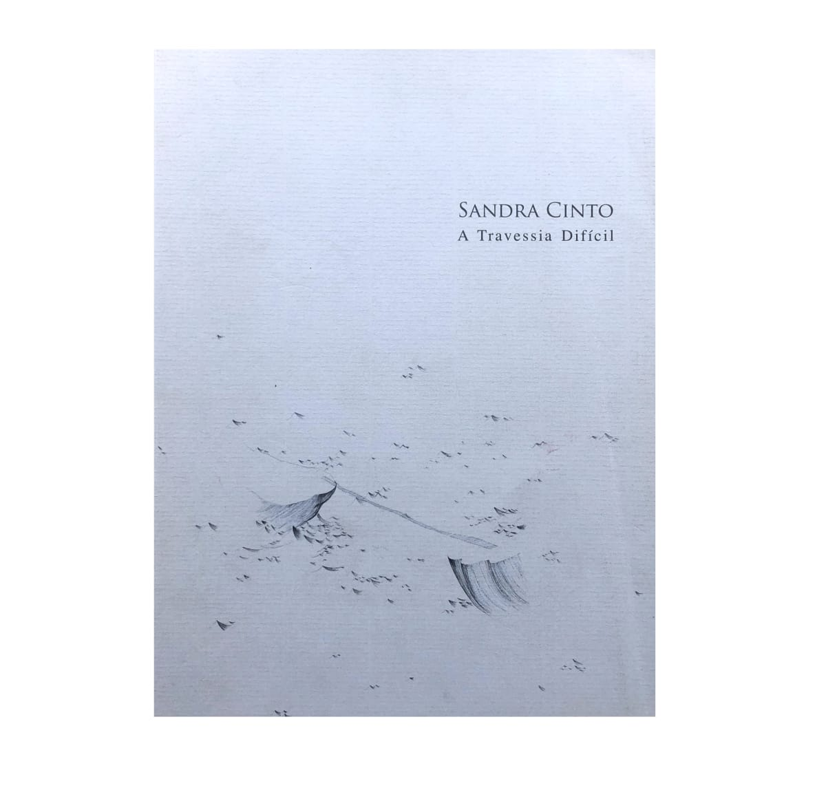 "Exhibition catalogue cover. Delicate illustration of waves on a light blue background. Black title text: ""Sandra Cinto, A Travessia Difícil"""