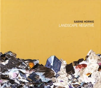 Exhibition catalogue cover. Negative photo of landfill trash on a yellow background. Title text: Sabine Hornig, Landscape Negative