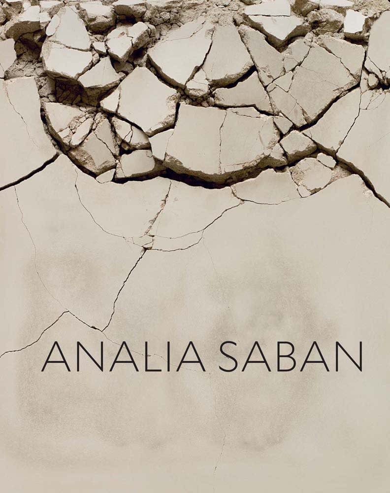 cover of Analia Saban book