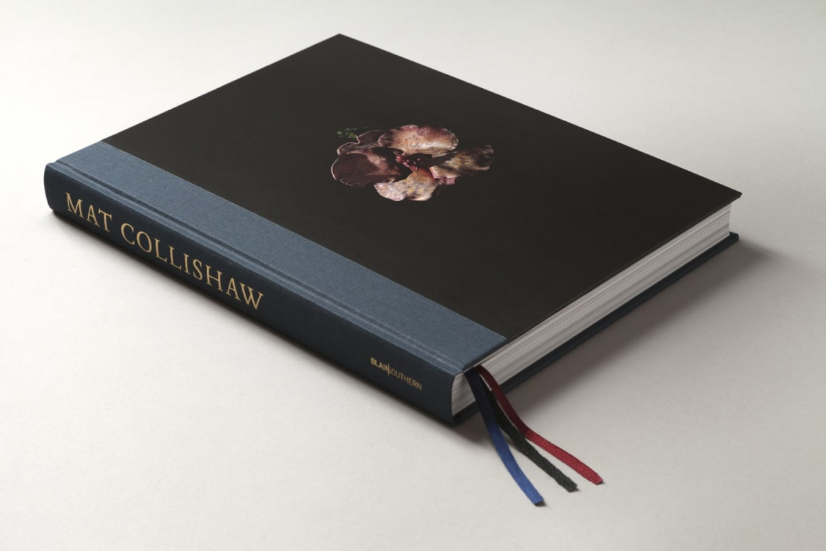 Book cover of Mat Collishaw
