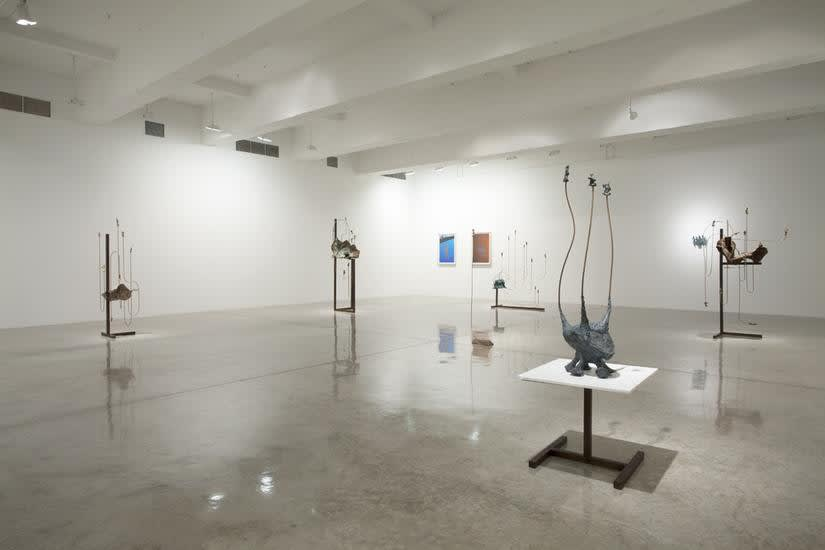 Installation image of Long's exhibition at TBG 2014.