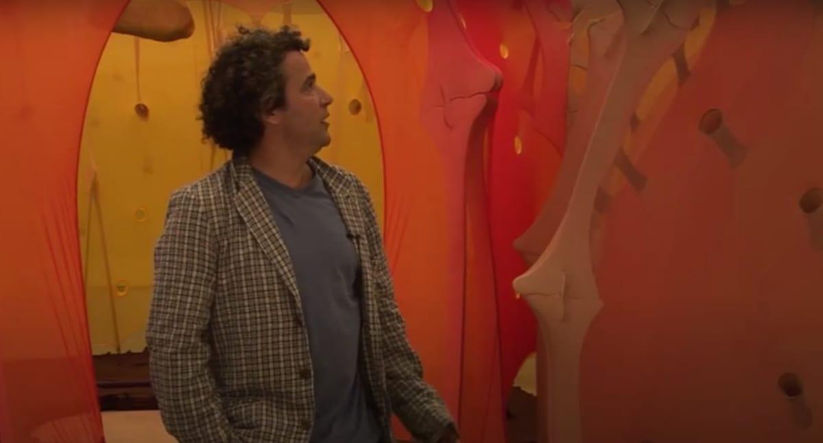 Ernesto Neto interview snapshot.