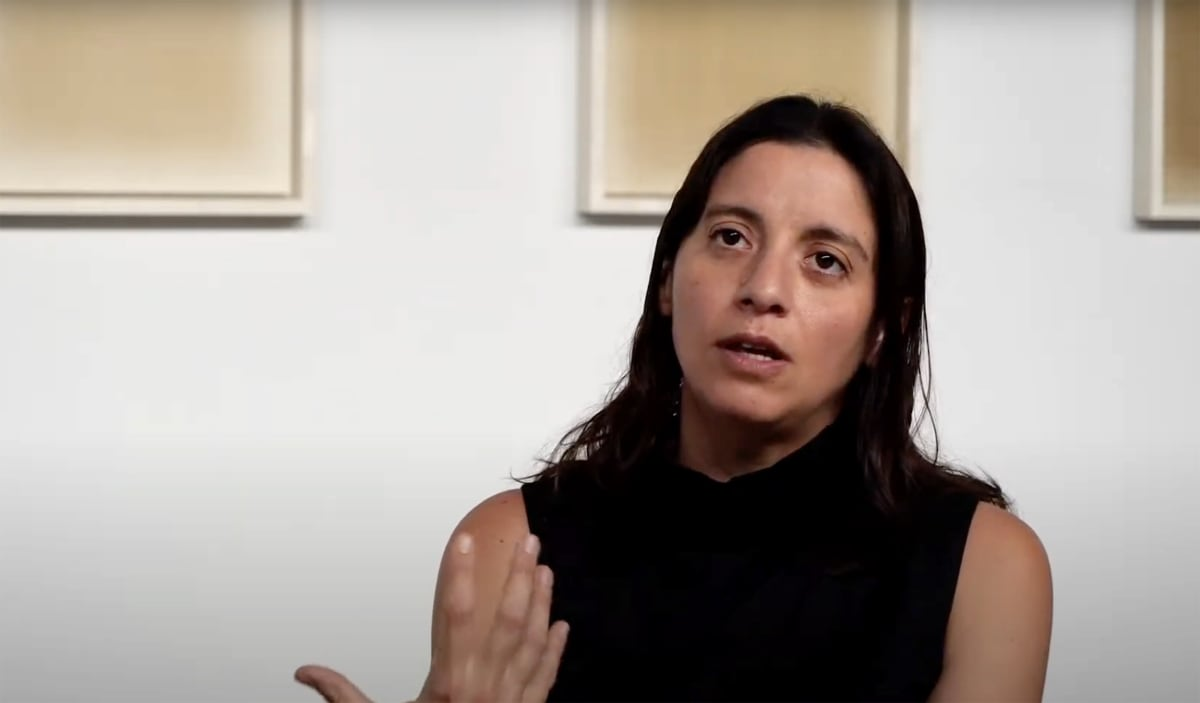 Screenshot of artist Analia Saban interview