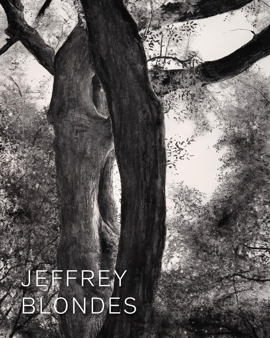 Jeffery Blondes