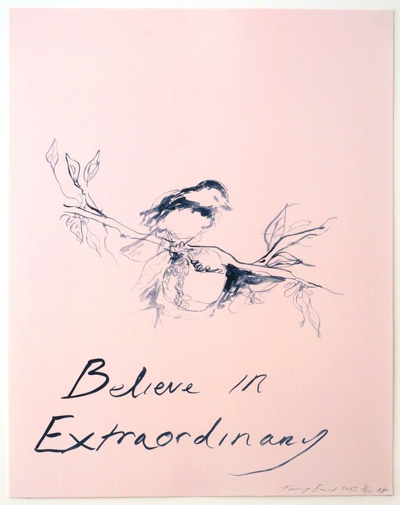 Tracey Emin, Believe In Extraordinary