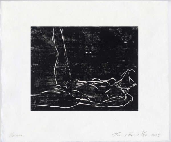 Tracey Emin, Crane
