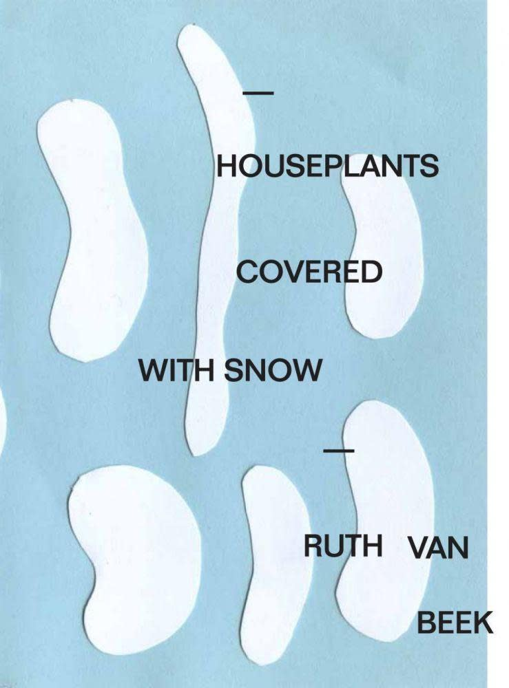 'Houseplants Covered With Snow'