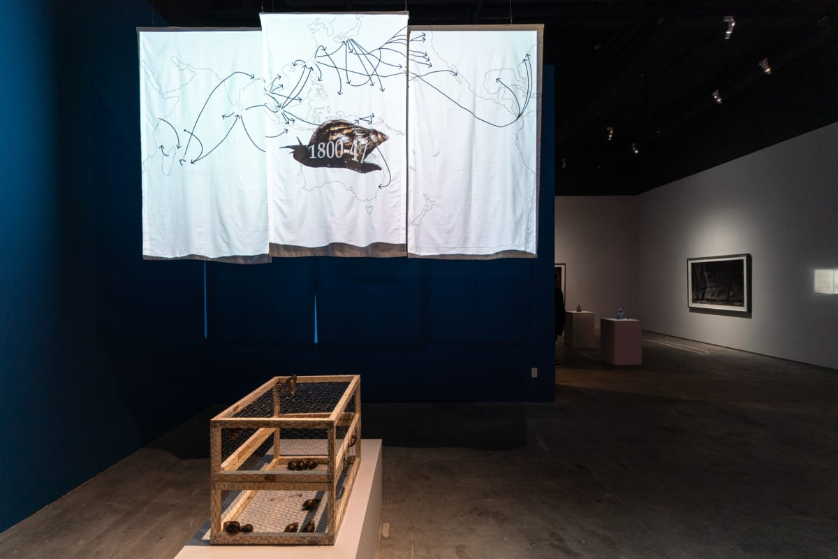 Nutantara Archive #14: Chang En-Man's Snail Project — The Trail Map and the Taste