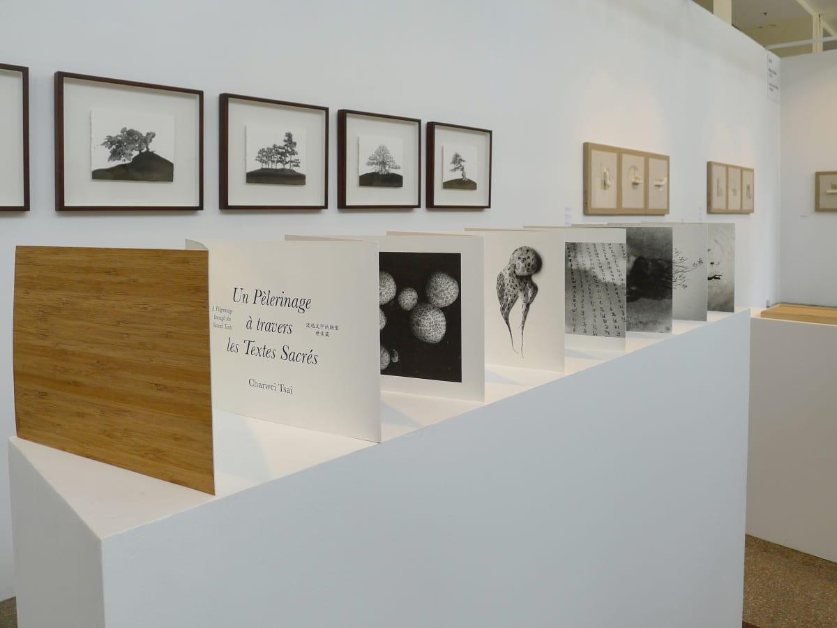 上海藝術博覽會 國際當代藝術展 2012