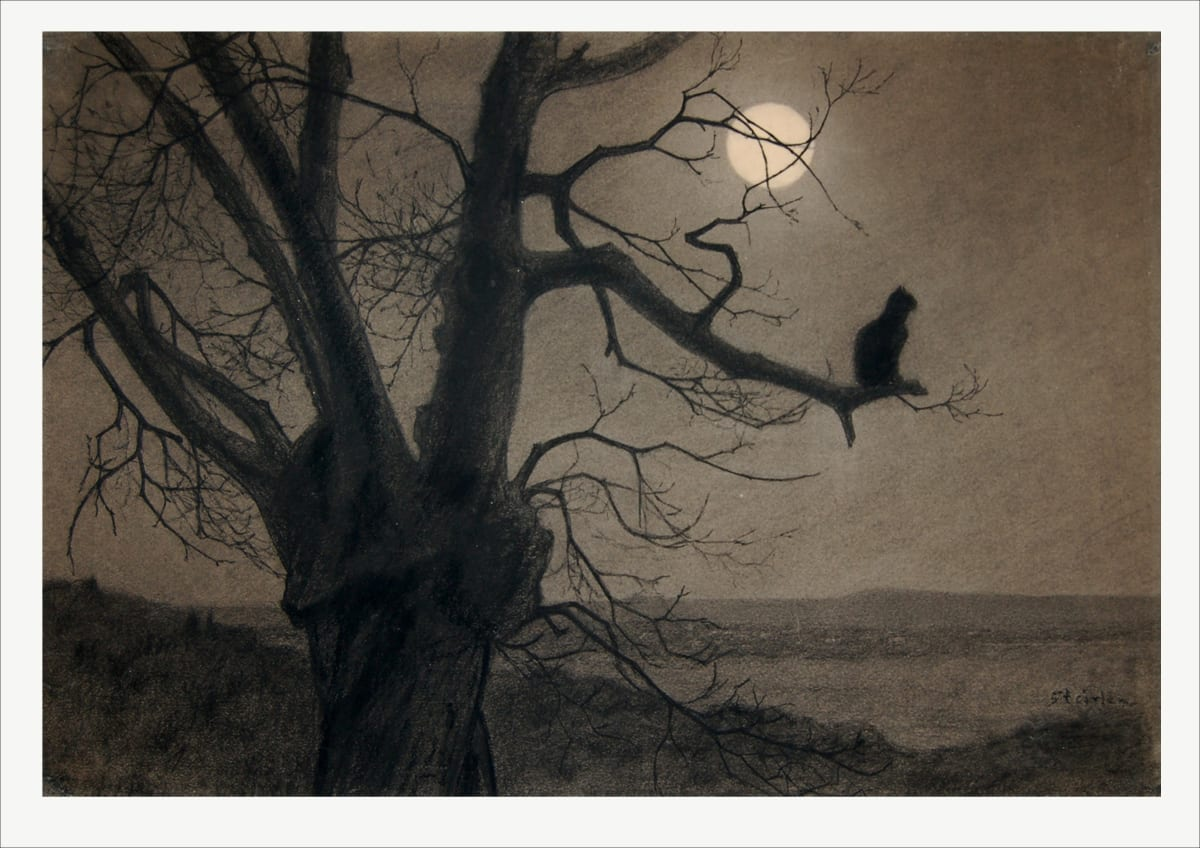 Steinlen, Theophile Alexandre Chat au Clair de Lune Charcoal heightened with white chalk 17 x 24 3/4 inches Provenance: Sotheby's, London SOLD